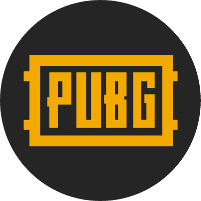 PlayerUnknown's Battlegrounds Partner